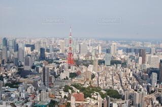 東京タワーと東京湾の写真・画像素材[3967072]