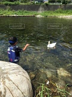 川遊びをする子供の写真・画像素材[3967377]