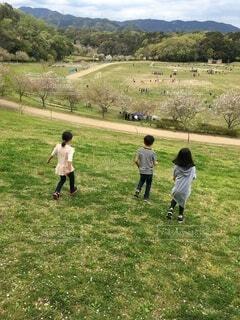 公園で走る子供たちの写真・画像素材[3967399]