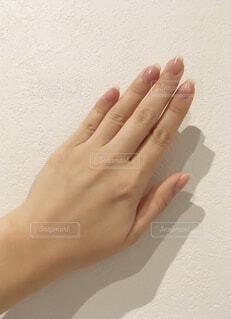 女性の手の写真・画像素材[3968549]