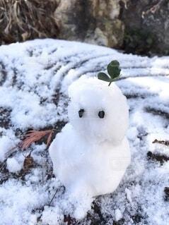 雪だるまの写真・画像素材[3977148]