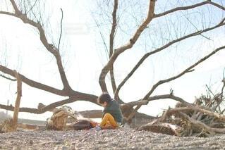 流木探しをしている子供の写真・画像素材[4190338]