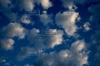 季節の変わり目の写真・画像素材[4048160]