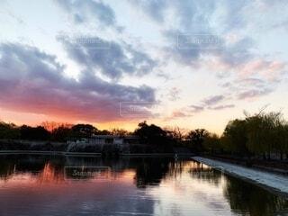 夕焼けの反射で水に映る樹木の写真・画像素材[3996242]