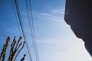 青空と電線の写真・画像素材[4282222]