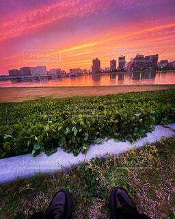 背景に都市がある水域に沈む夕日の写真・画像素材[4450207]