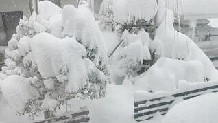 雪の写真・画像素材[4036370]