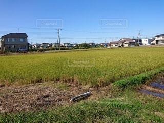 田舎の田園風景の写真・画像素材[4823957]