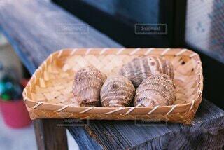 里芋の写真・画像素材[4005928]