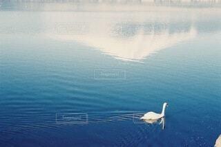 水の体の写真・画像素材[4270124]