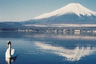 水の体の前に立っている人の写真・画像素材[4270126]