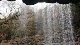 滝の裏からの眺めの写真・画像素材[4038793]