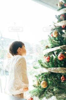 クリスマスツリーを眺める男の子の写真・画像素材[4018214]