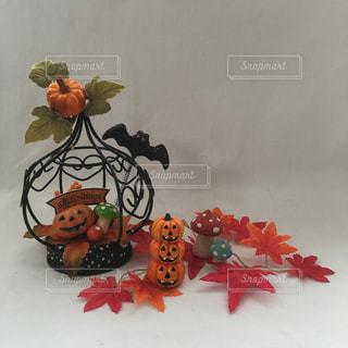 秋の写真・画像素材[239637]