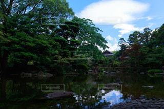 風景 - No.603350