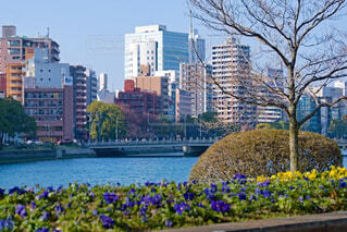 広島のリバーサイドの写真・画像素材[4219447]