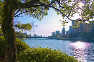 京橋川からの景色の写真・画像素材[4219450]