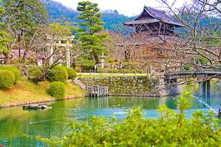 錦雲閣と吉香花菖蒲園の写真・画像素材[4260298]