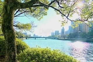 春晴れの広島の写真・画像素材[4279468]