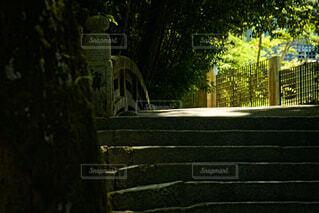 石橋の写真・画像素材[4683712]