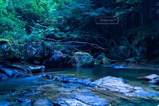 川池鉄穴流し遺跡の川の写真・画像素材[4704190]