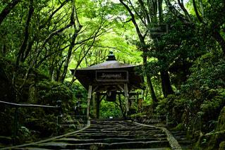 三滝寺の写真・画像素材[4740553]