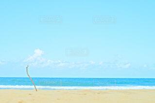 砂浜と海と1本の流木の写真・画像素材[4830584]