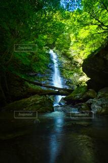 瀬戸の滝の写真・画像素材[4859516]