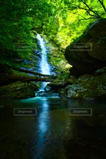 瀬戸の滝の写真・画像素材[4859517]