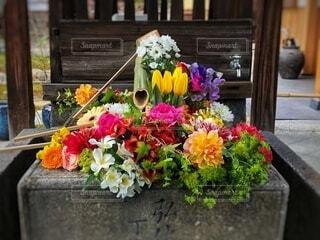 勝林寺の花手水 色とりどりの花々が素敵ですの写真・画像素材[4023566]