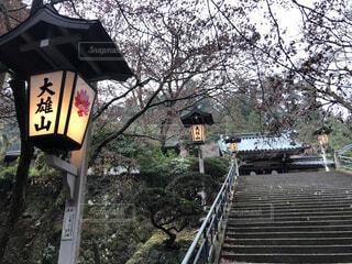 石段と大雄山と書かれた灯籠の写真・画像素材[4029765]