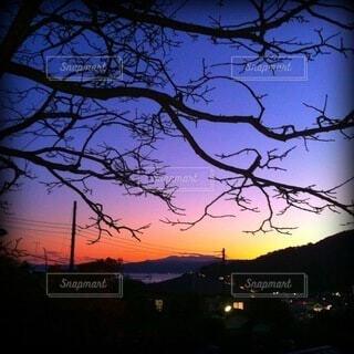 夕暮れ時の一瞬の赤やけ。枯れ木とのシルエットがマッチしている。の写真・画像素材[4086783]