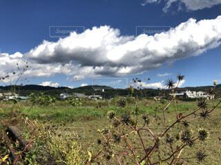 青い空と白い雲秋晴れの写真・画像素材[4943947]