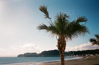 海の写真・画像素材[427325]
