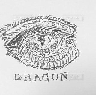 ドラゴンの絵の写真・画像素材[4046389]