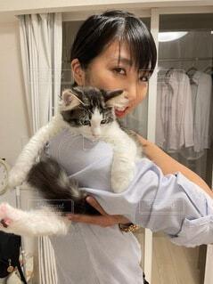 猫を抱く人の写真・画像素材[4834598]