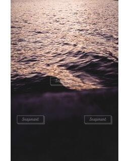 水面の写真・画像素材[4025471]
