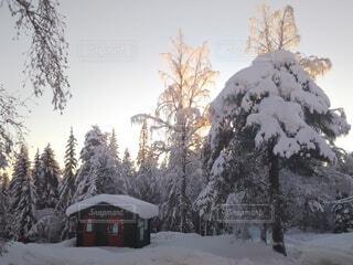 北欧の自然の雪景色の写真・画像素材[4029319]