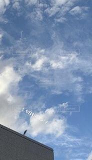 空と鳥と建物の写真・画像素材[4040881]