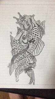 夫婦鯉の写真・画像素材[4038108]