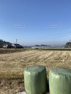 緑色の牧草ロールの写真・画像素材[4050768]