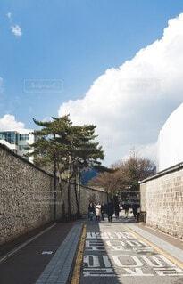 ソウルの道の写真・画像素材[4047450]