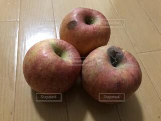 ドン・キホーテで3個で100円で売られていたりんごの写真・画像素材[4051788]