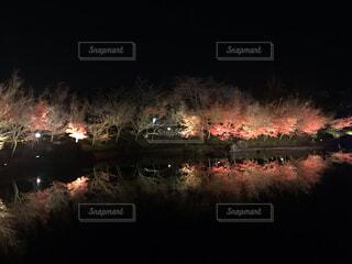 夜の線路上の電車の写真・画像素材[4049860]
