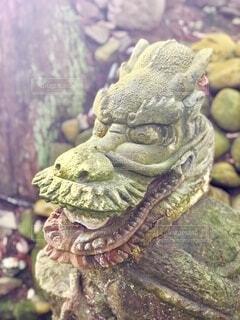石のドラゴンの写真・画像素材[4054761]