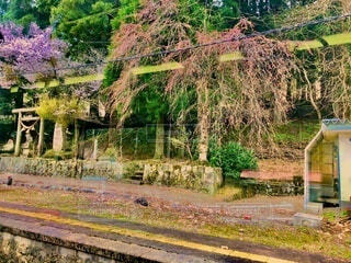 駅横の神社の写真・画像素材[4055941]