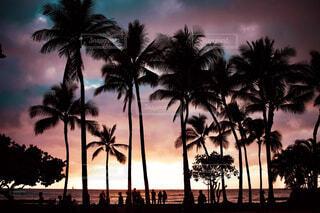 Magic hour Hawaiiの写真・画像素材[4059079]