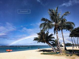 Rainbow&surferの写真・画像素材[4062454]