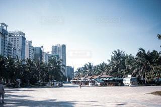 Beach Walkの写真・画像素材[4075777]