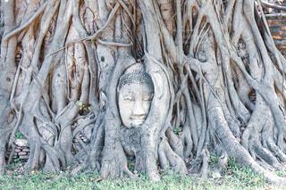 Wat Phra Mahathatの写真・画像素材[4083749]
